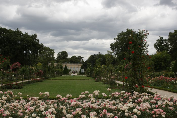 As roseiras do Jardin de Bagatelle, em Paris
