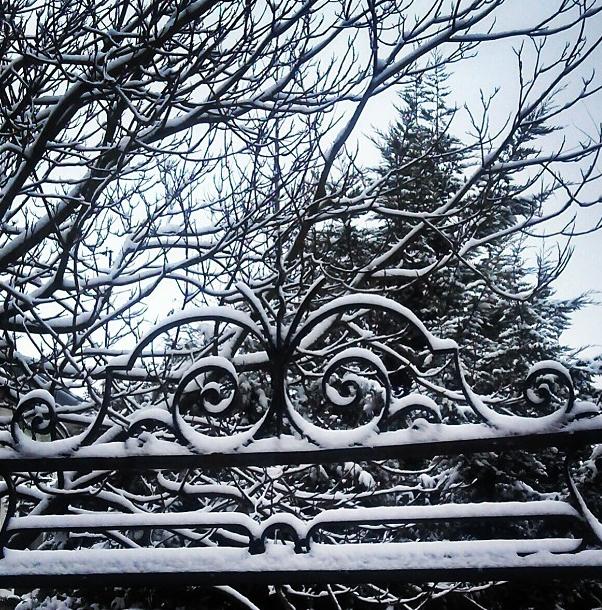 Arvores sem folha e neve em Paris