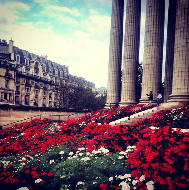 Canteiro de flores em Paris