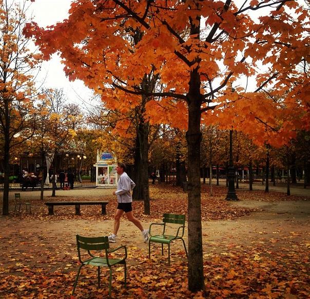 Se encher de cores no outono