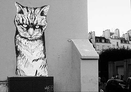 Street art, Rafael Suriani