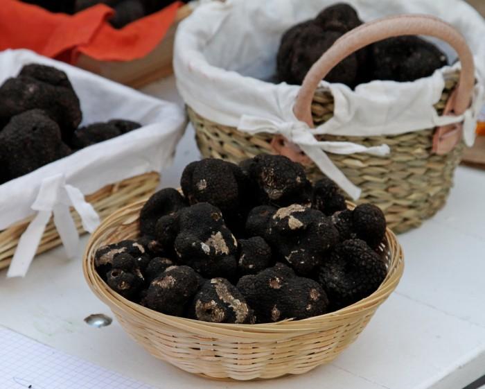 Trufas negras do Périgord
