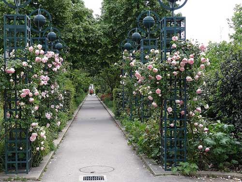 Belo jardim suspenso