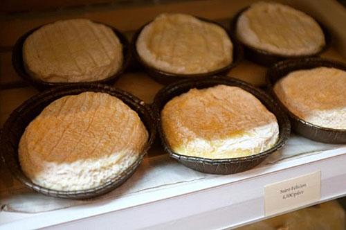 Delicioso queijo Saint Félicien