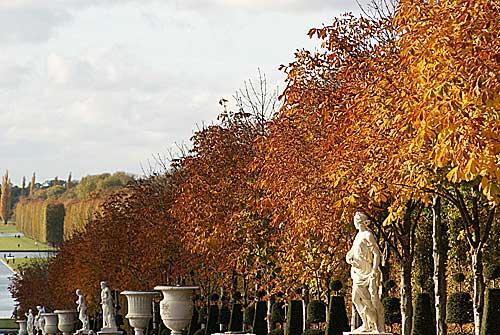 Versailles no outono