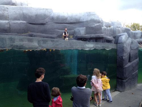 Os aquários, momento forte da visita