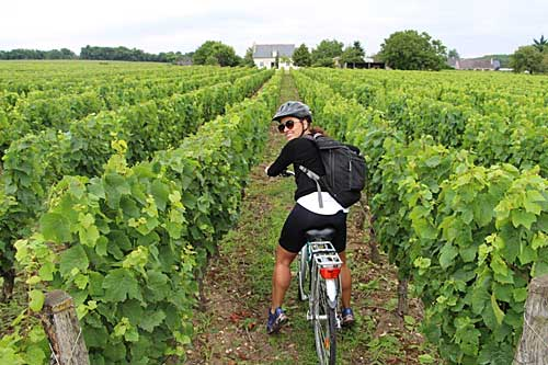 Vale do Loire by bike