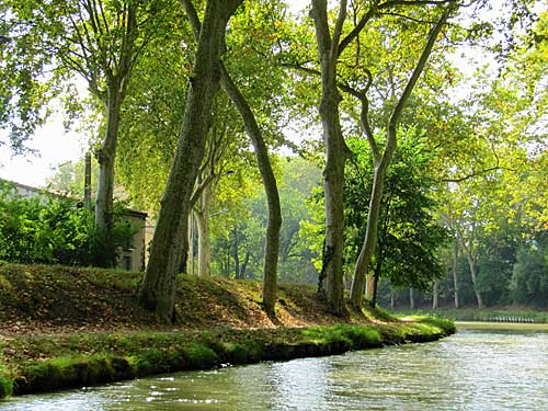 Canal du Midi, margens