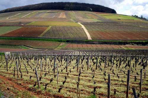 Climat da Borgonha