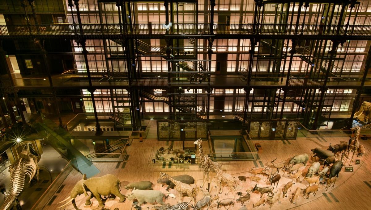 A Grande Galeria da Evolução, em Paris.