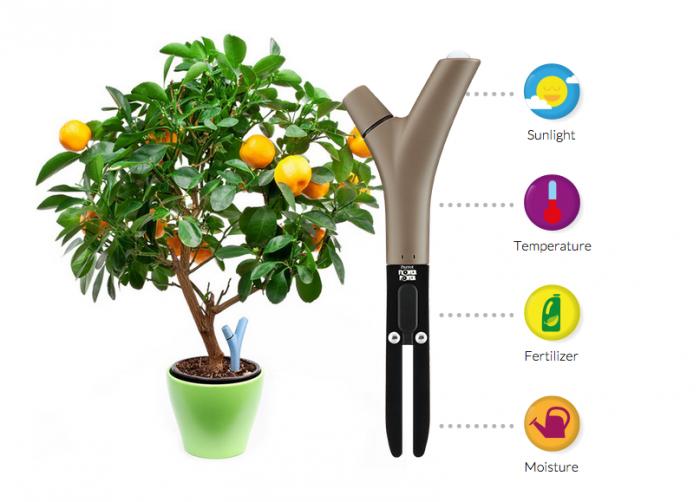 O Drone Parrot Flower Power monitora a saúde da planta