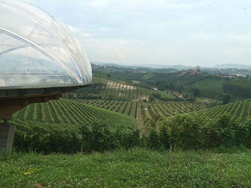 Vínicola Ceretto