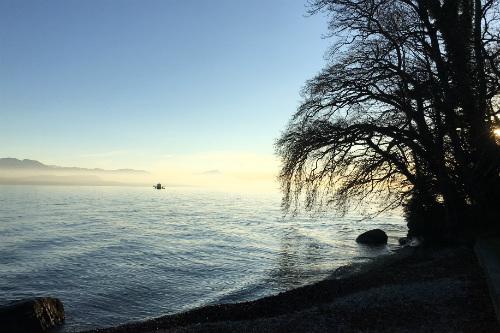Margens do lago Leman, em Saint Prex