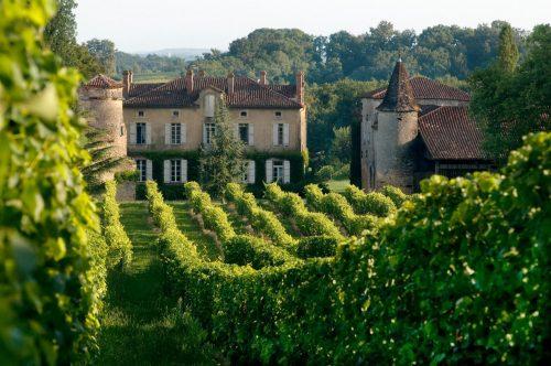 Vinhedos do Château de Maniban