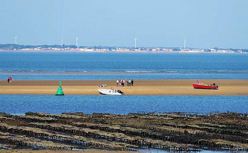 Ilha de Ré e seus parques de ostras. thierry Ilansades no Flickr