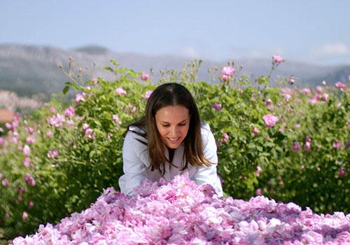 As plantações de rosas da Chanel em Grasse. Foto Natalie Portman © Christian Dior Parfums publicado pela revista Elle/juin, 2016