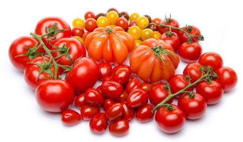 receita facil de tomate
