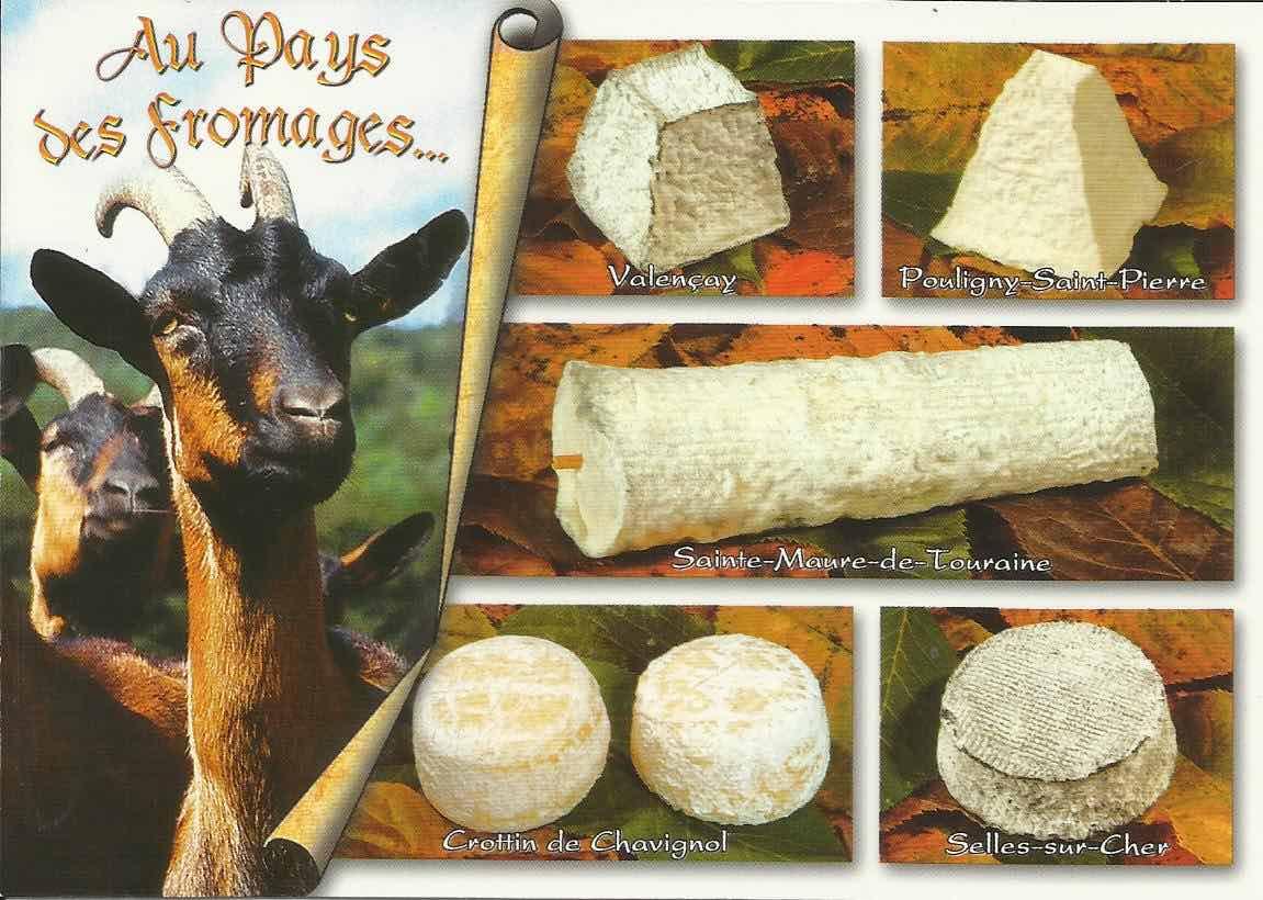 queijos de cabra vale do loire
