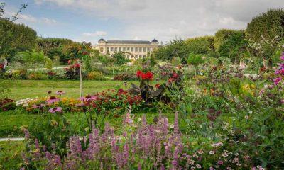 jardim des plantes paris em setembro