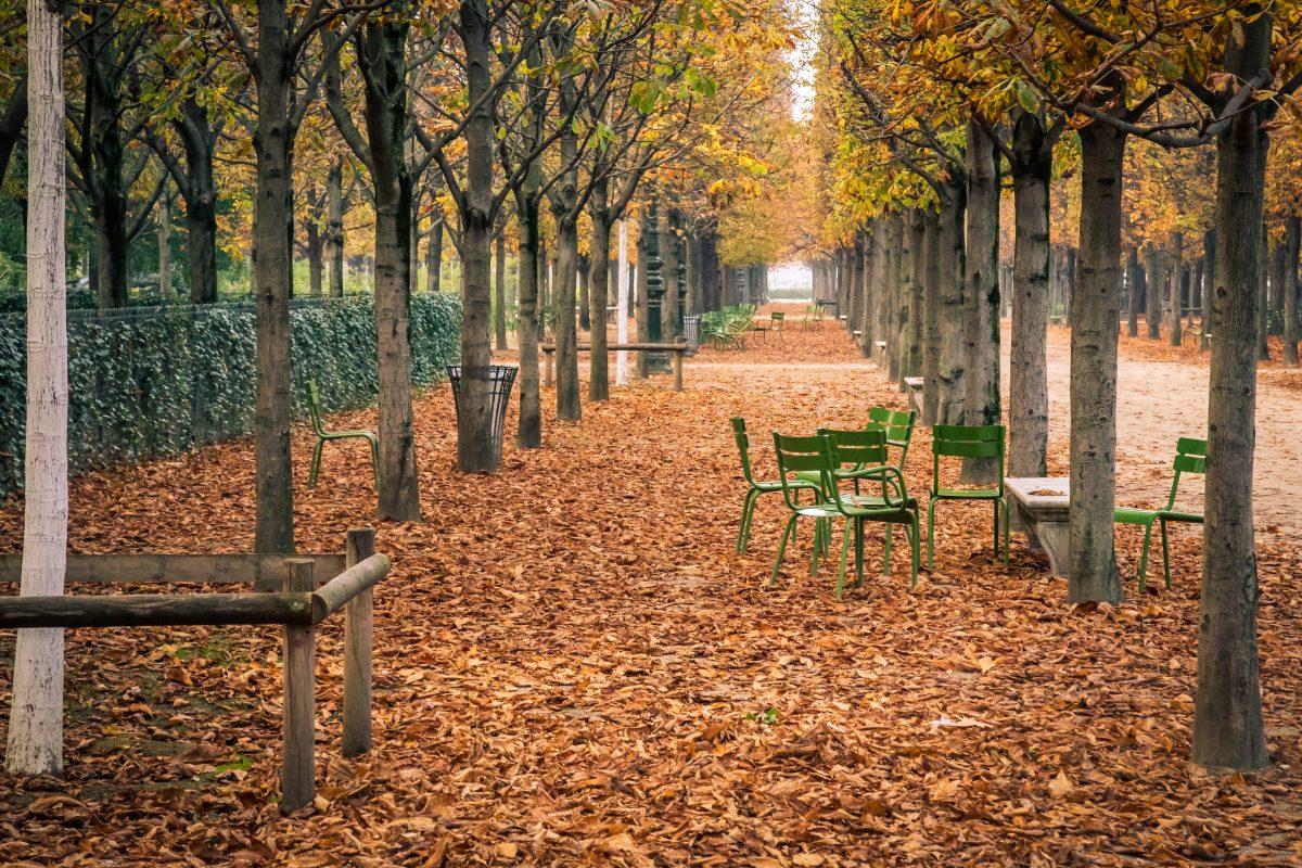 fazer em paris em outubro