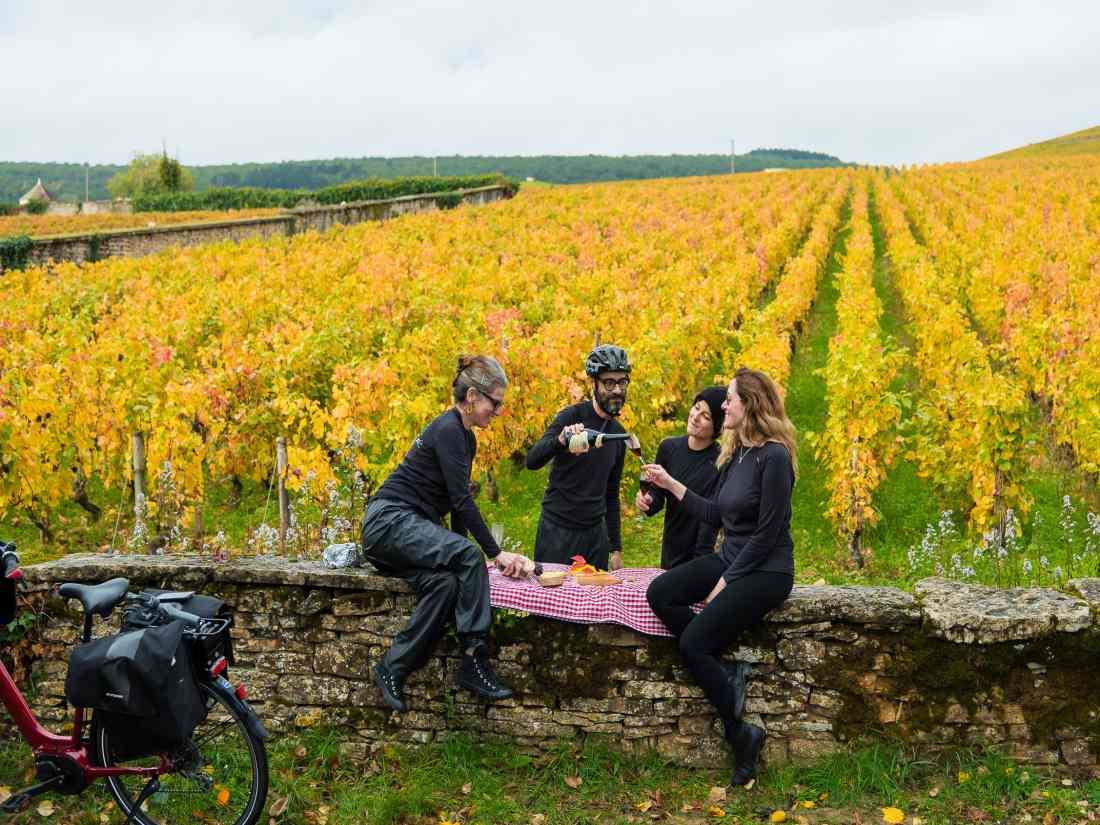 Piquenique nos vinhedos da Borgonha.